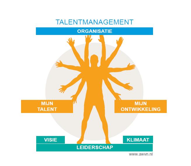 Schematische voorstelling AWVN-talentmanagement
