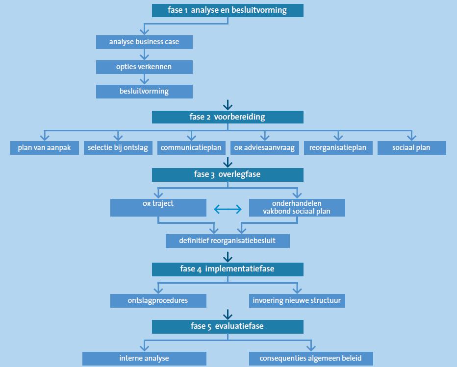 Schematische voorstelling van het reorganisatieproces